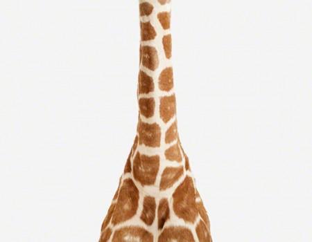 z2012GiraffeDetail